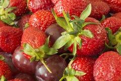 草莓和葡萄特写镜头 库存照片