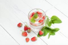 草莓和薄荷的果子戒毒所芳香水 库存照片