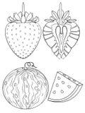 草莓和西瓜着色页 图库摄影