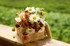 草莓和雏菊在篮子 免版税库存照片