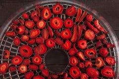 草莓和更加干燥的概念 库存图片