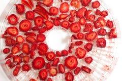 草莓和更加干燥的概念 免版税库存图片