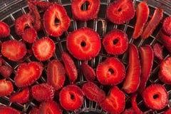 草莓和更加干燥的概念 免版税库存照片
