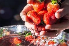 草莓在上升从在黑暗的背景的水特写镜头的手上在太阳的光芒 库存照片