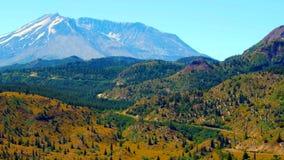 草莓在圣海伦山的山行迹美丽的景色  免版税库存照片