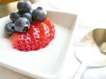 草莓在白色小模子的蓝莓酸奶 库存照片