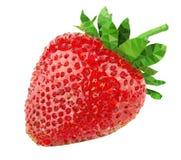草莓多角形传染媒介 免版税图库摄影