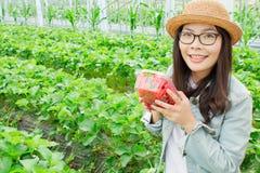 草莓女孩 库存图片