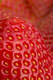 草莓我 库存照片