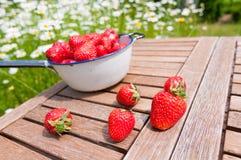 草莓新鲜从庭院 免版税库存照片