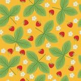 草莓无缝的样式 库存照片