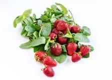 草莓时间 免版税库存图片