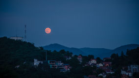 草莓月亮 免版税库存图片