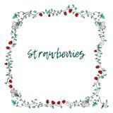 草莓框架装饰品 库存照片