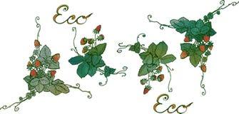草莓水彩手工制造小插图莓果全部 免版税库存图片
