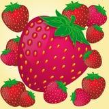 草莓混合,红色和桃红色颜色 库存图片