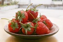 草莓焦点 免版税库存照片