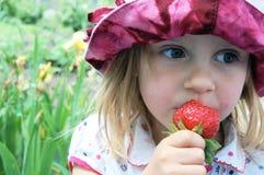 草莓甜点 库存照片