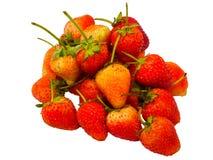草莓白色孤立 免版税库存照片