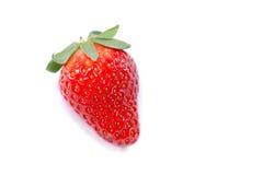 草莓白色 库存照片