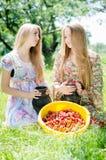 草莓的时刻:2年轻美丽的浅黑肤色的男人&白肤金发的少妇女朋友饮用乐趣被收获的草莓在夏天 免版税图库摄影