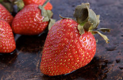 草莓的特写镜头 库存图片