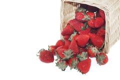 草莓篮子 免版税库存照片