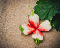 草莓花的被切的装饰 图库摄影