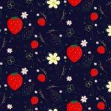 草莓花 免版税图库摄影