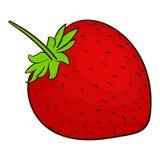 草莓莓果 库存照片