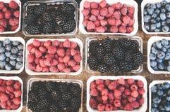 草莓蓝莓和莓在纸盒箱子 免版税库存图片
