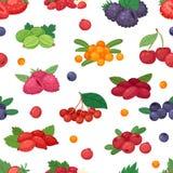 草莓蓝莓莓黑莓和红浆果例证berrylike集合的莓果传染媒介berrying的混合 皇族释放例证