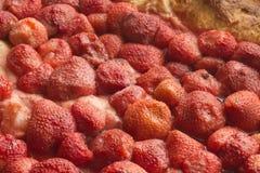 草莓蛋糕特写镜头 库存照片