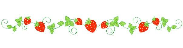 草莓边界/分切器 免版税库存照片