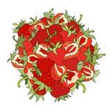 草莓集合 库存例证