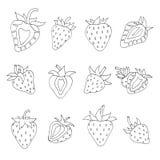 草莓集合 向量例证