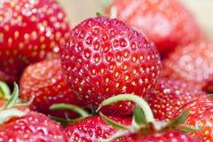 草莓,关闭 库存图片