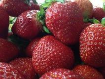 草莓,特写镜头 图库摄影