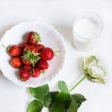 草莓,玫瑰色和杯牛奶 免版税库存图片