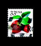 草莓,莓果serie,大约1999年 免版税库存图片