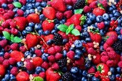 草莓,蓝莓,无核小葡萄干,薄荷叶的分类 夏天与拷贝空间的莓果背景您的文本的 顶层 免版税库存图片