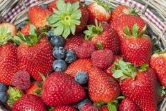 草莓,蓝莓,莓混合 免版税库存照片