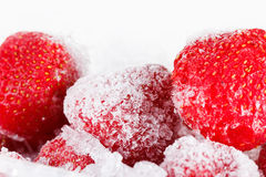 草莓,结冰为在白色背景的长期储备 库存图片