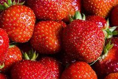 草莓, 库存照片