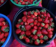 草莓 新鲜的有机莓果 切的背景剪切果子半菠萝 库存照片