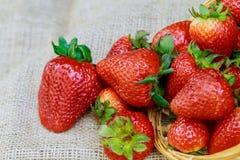 草莓 新鲜的草莓 红色strewberry 草莓汁 库存照片
