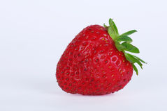 草莓 免版税库存图片