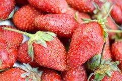 草莓 免版税图库摄影