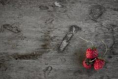03草莓 免版税库存图片