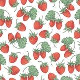 草莓collestion 2-05 免版税库存图片